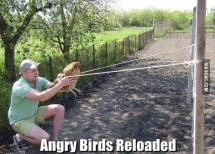 Ad về quê chơi Angry Birds đây ~ :v