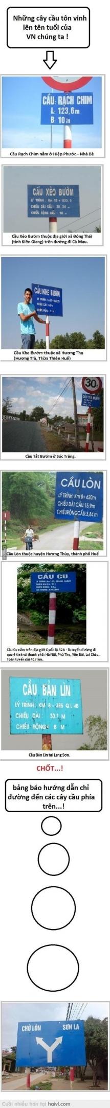 Cầu Việt Nam luôn bá đạo :))