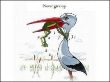 Không bỏ cuộc :*)