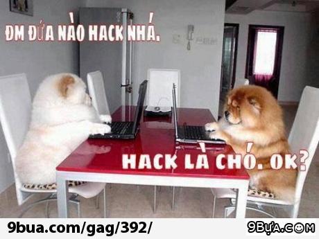Đứa nào Hack là Chó =))