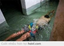 Bạn nào thích có hồ bơi trong nhà ntn k ?...