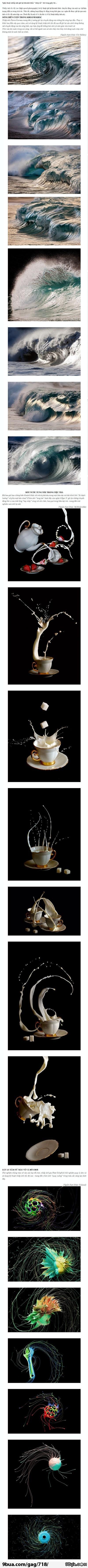 """Những khoảnh khắc """"chớp mắt là biến mất"""" :)"""